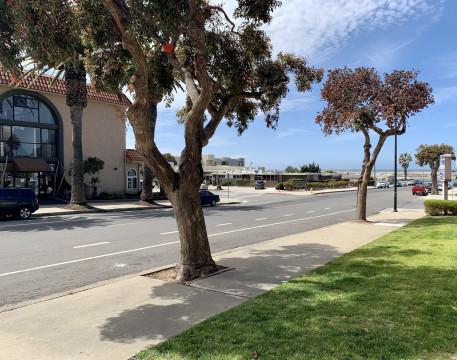 Quiet Street View